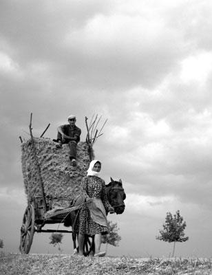 μεταφορά με το κάρο, περιοχή Τρικάλων, 1965
