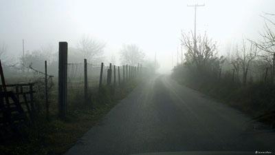 ομίχλη, δρόμος, τοπίο