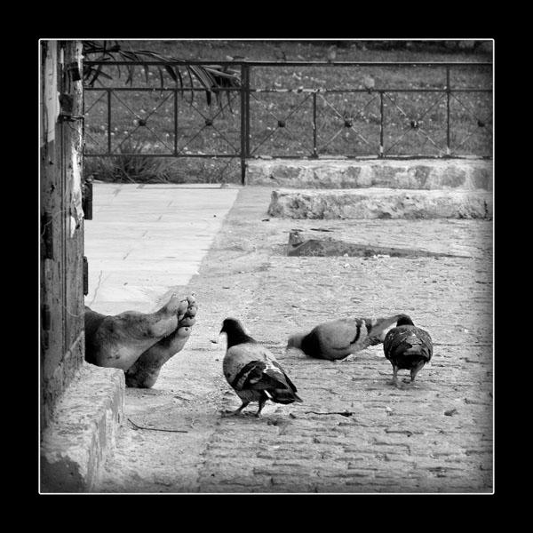 πόδια άστεγου άντρα φαίνονται από μία γωνία, δίπλα του περιστέρια
