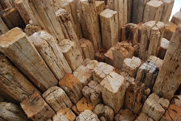 κομμένα ξύλα σε θεμέλια κτηρίου