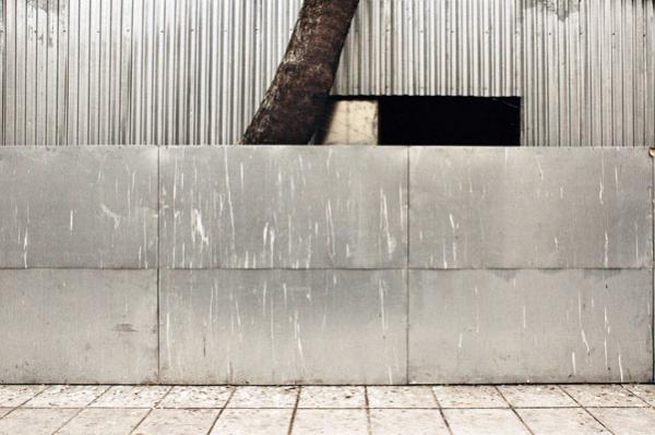 κορμός δέντρου, τσίγκος, κτήριο