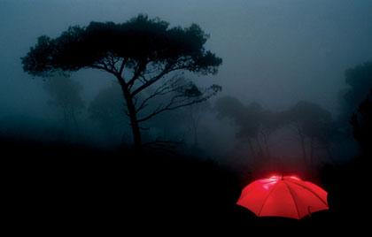 κόκκινη ομπρέλα, τοπίο με ομίχλη, δέντρα