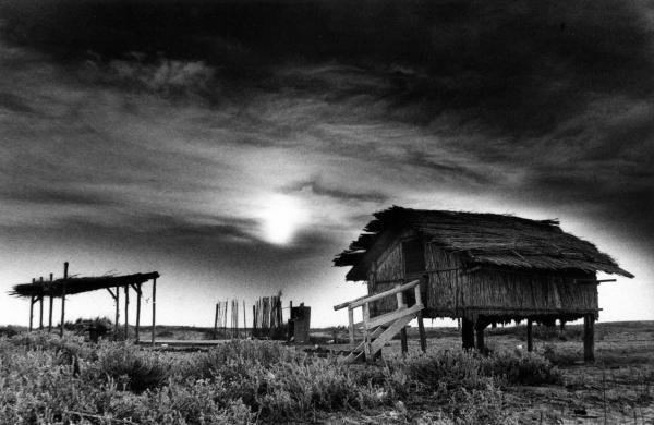 παράγκα, ερημιά