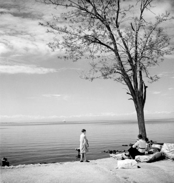 άνθρωποι σε παραλία στη σκιά ενός δέντρου, μαυρόασπρη φωτογραφία