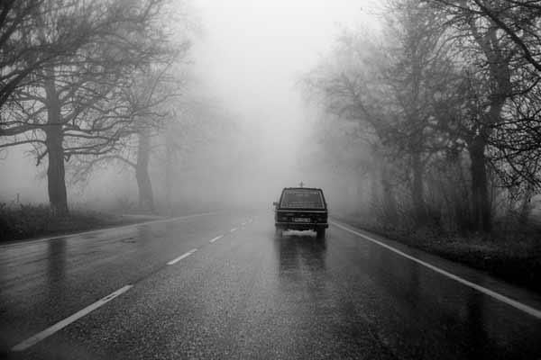 ασπρόμαυρη φωτογραφία, νεκροφόρα σε άσφαλτο, συστάδες δέντρων
