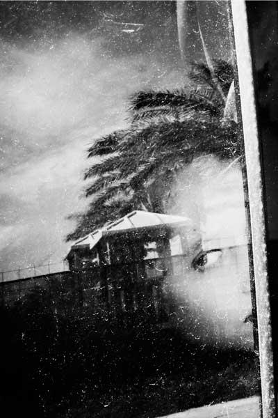 ασπρόμαυρη φωτογραφία, αντανάκλαση προσώπου γυναίκας σε τζάμι, φύση