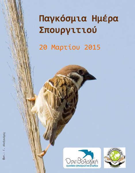 αφίσα για την παγκόσμια ημέρα σπουργιτιού