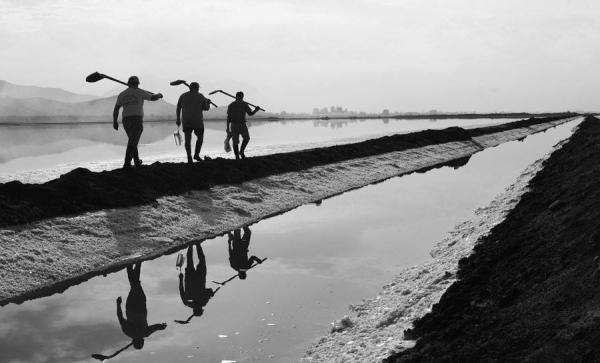 μαυρόασπρη φωτογραφία, εργάτες στη λιμνοθάλασσα Μεσολογγίου
