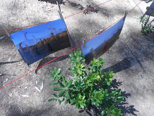 κρεμασμένες φωτογραφίες με μανδαλάκια σε κόκκινο σχοινί