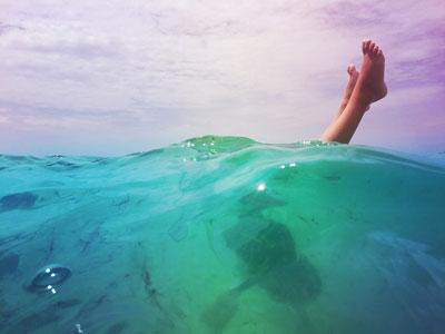 FLORIDA / υποβρύχια φωτογραφία