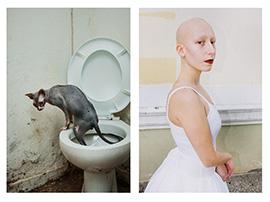 Multiverse, δίπτυχο, σκυλος χωρίς τρίχωμα στη τουαλέτα, φαλακρή γυναίκα με λευκό φόρεμα