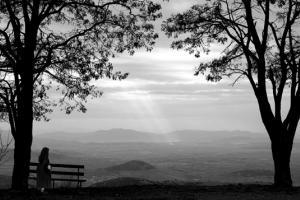 ασπρόμαυρη φωτογραφία, τοπίο, δέντρα, παγκάκι, άνθρωπος
