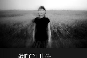 Grey issue 6