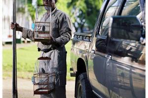 άνδρας κρατάει ένα κλουβί πουλιού
