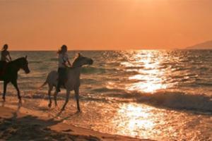 αναβάτες σε άλογα κάνουν βόλτα σε παραλία με τη δύση του ηλίου