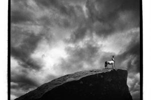 ασπρόμαυρη φωτογραφία, κέντραυρος στην άκρη βουνού