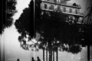 ασπρόμαυρη φωτογραφία, αντανάκλαση σε τζάμι, παραλία, δέντρο, άνθρωποι