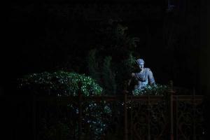 νυχτερινή φωτογραφία, άγαλμα, κήπος