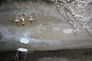 μία λευκή καρέκλα, ένα φωτιστικό και κλαδιά απο μία αμυδαλιά σε μία αυλή