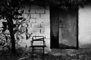 ασπρόμαυρη φωτογραφία, ερηπομένο σπίτι, δέντρο, πόρτα, καρέκλα
