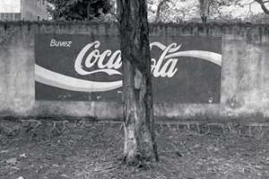διαφημιστική αφίσα, τοίχος, δέντρα