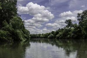 Πηνειός, έγχρωμη φωτογραφία, ορίζοντας, κλαδί, σύννεφα