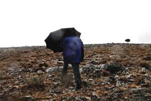 άνθρωπος, ομπρέλα, βροχή, άγονο τοπίο