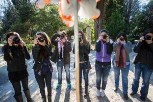 επτά άτομα σε ένα πάρκο φωτογραφίζουν ένα στύλο