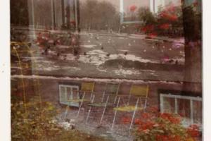 φωτογραφία τραβηγμένη μέσα απο τζάμι, κήπος με λουλούδια, πολύχρωμες καρέκλες, χιονισμένο πάρκο με μαύρα πουλιά