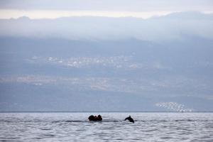 μία βάρκα με μετανάστες στη θάλασσα και δίπλα τους ένα δελφίνι που πηδά απο τη θάλασσα