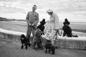 ένα κύριος και μία κυρία βγάζουν βόλτα τα 5 σκυλιά του