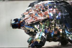 κολλάζ φωτογραφιών που σχηματίζει γουρούνι