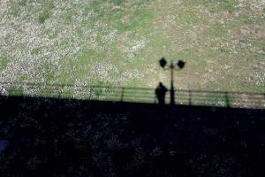 σκιά ενός ανθρώπου πάνω σε γκαζόν