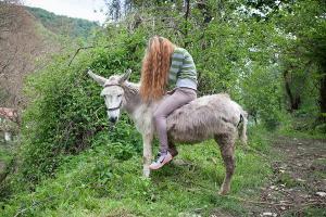 κοπέλα πάνω σε γάιδαρο σε κάποιο δάσος / Το καλό βουνό, Αλβανία, 2017
